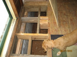 re-framed damaged floor joists