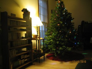 Family Christmas Tree, 2010